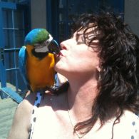 Me and Macaw